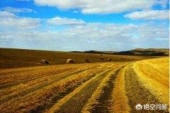 呼伦贝尔草原旅游攻略:10月份去呼伦贝尔好不好?有什么攻略值得推荐?