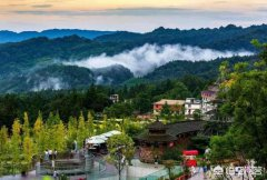 碧峰峡旅游攻略:成都碧峰峡好玩吗?你怎么看?