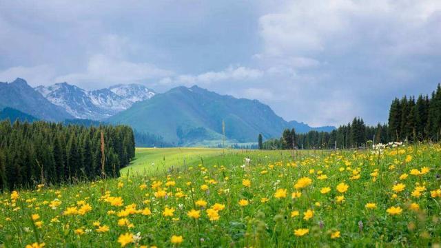 新疆的旅游风景区,你印象最深的是哪里?你认为新疆什么最美?