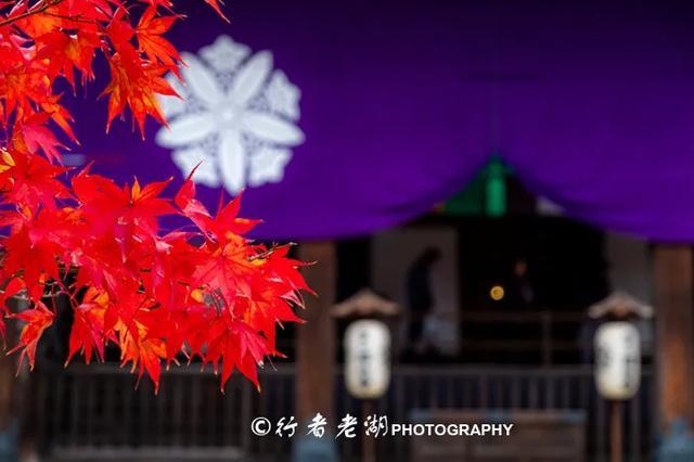 普通中国公民可以申请去日本自由行吗?旅途中,需要注意些什么?