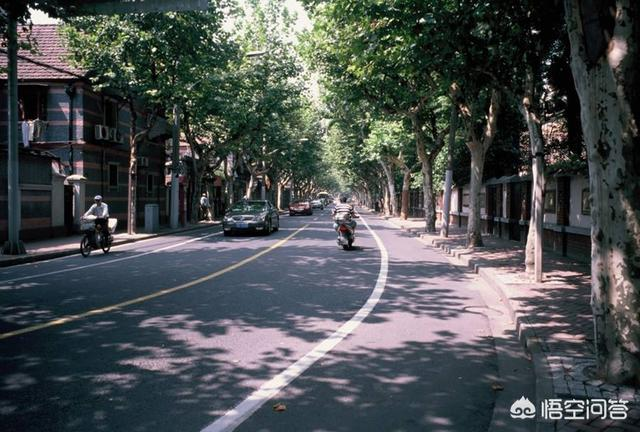 去上海旅行,给你最大的感受是什么?