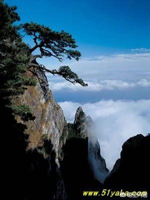网传庐山景区对日韩游客免票,却区别对待国人,你怎么看?