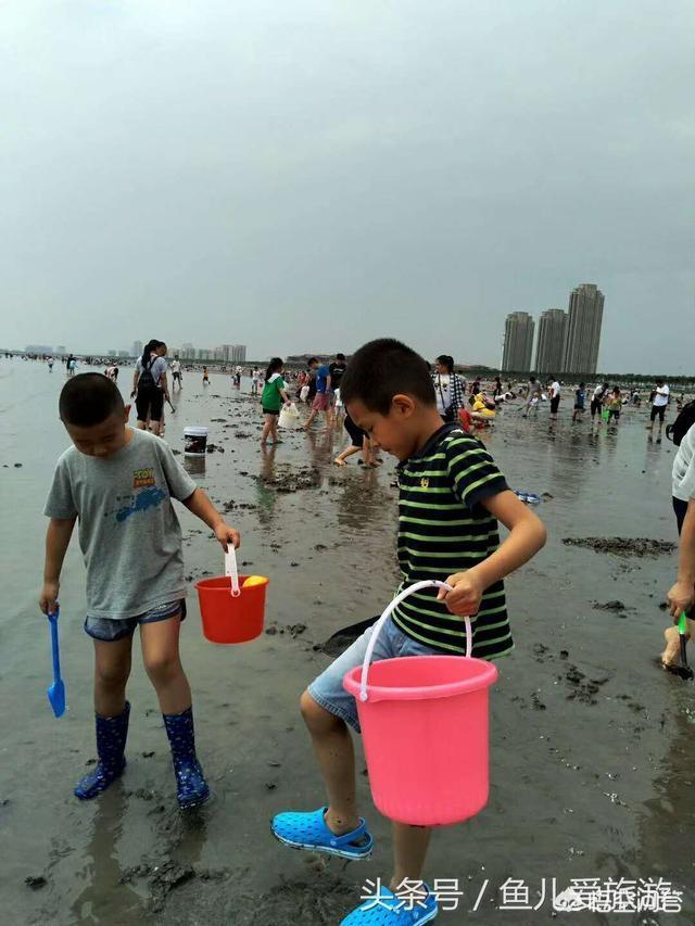 想问一下大家,北京周边可以赶海捉小螃蟹,带孩子去的海?