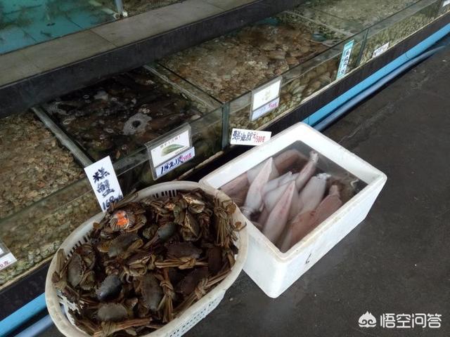 阳江海陵岛闸坡北洛秘境度假村附近有什么好玩的地方?